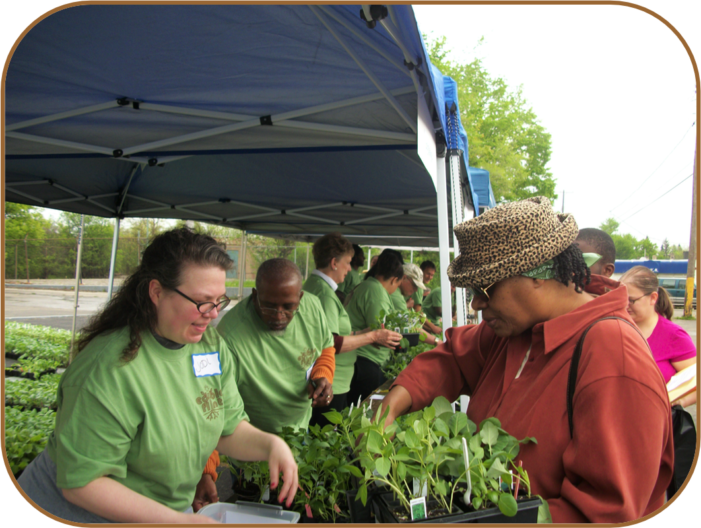Growing Interest: Why Edible Flint's gardening programs are attracting interest and support