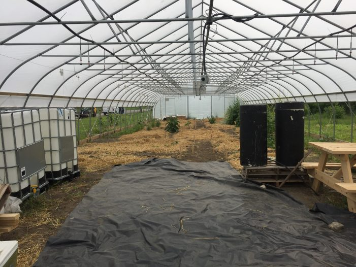 Growing Hope: Community gardens will benefit by solar-powered watering system