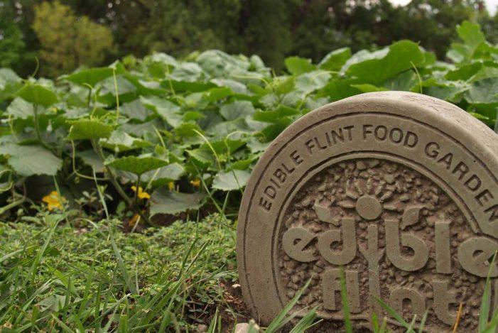 Gardening knowledge goes beyond shovels in Edible Flint winter classes