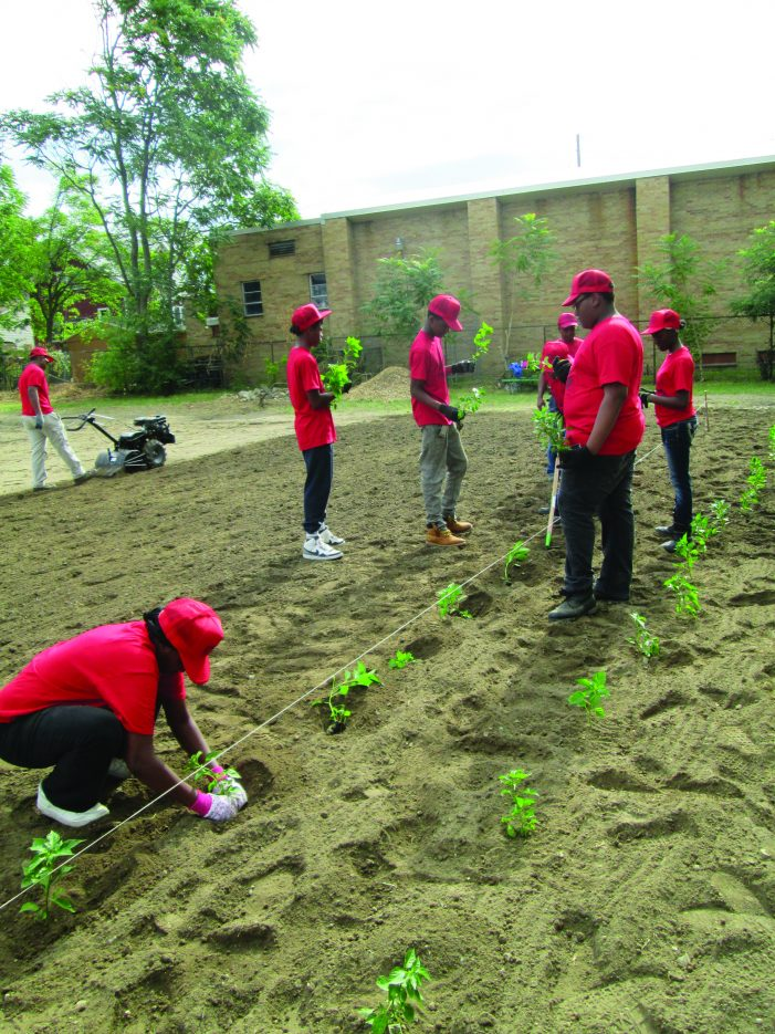 Cream of the Crop: Mr. Gaines' Garden grows youth leaders in Flint