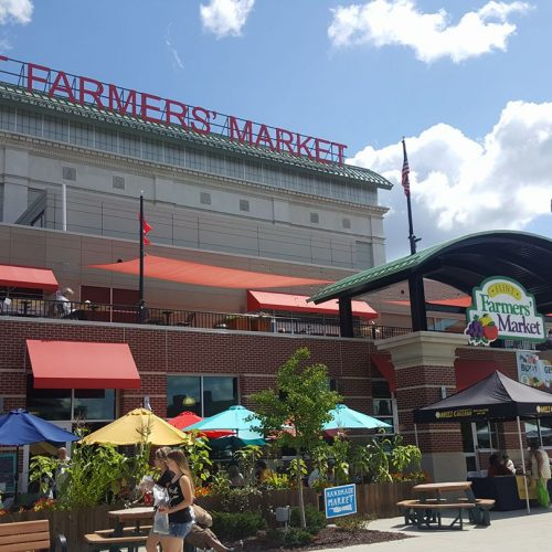 Bridge Card holders can double their purchasing power at farmers markets