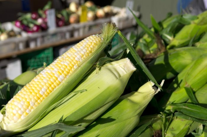 Fall's harvest items and more available at mobile pantry